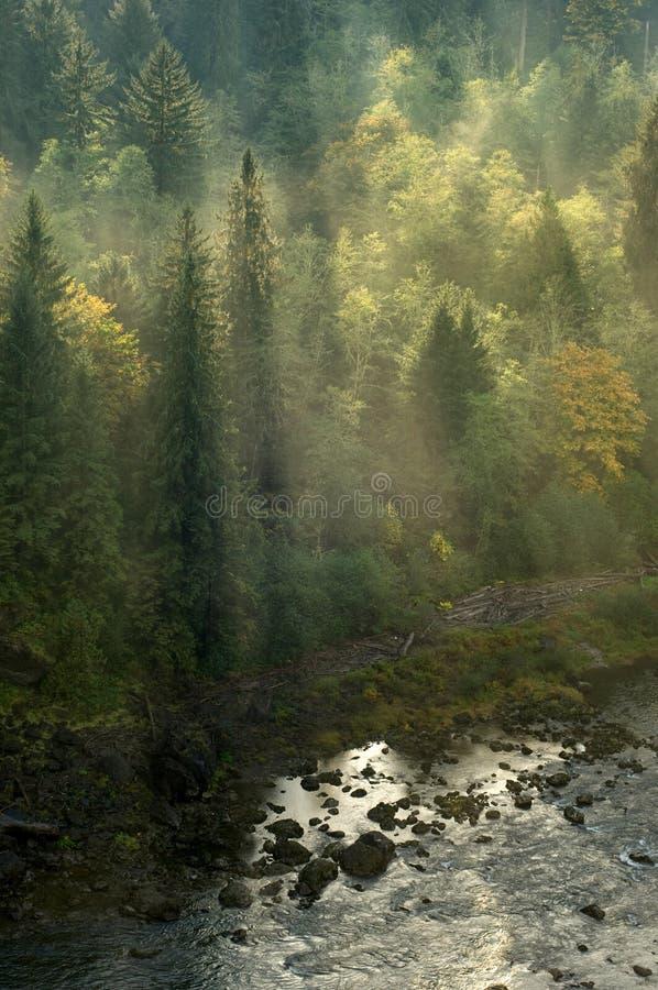 Pacific Northwest stock image