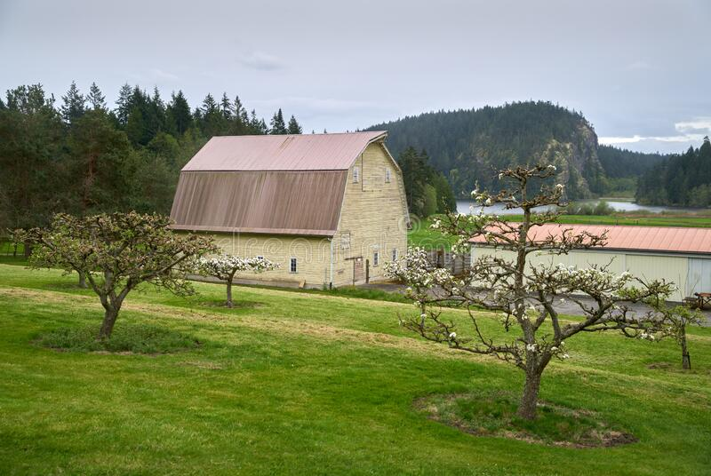Pacific Northwest Barn. A weathered barn in the Pacific Northwest. United States stock photos
