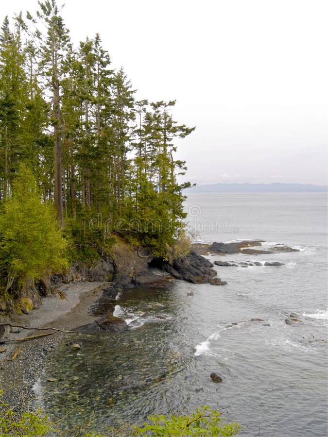 Download Pacific Northwest Beach stock image. Image of outdoors - 5207837