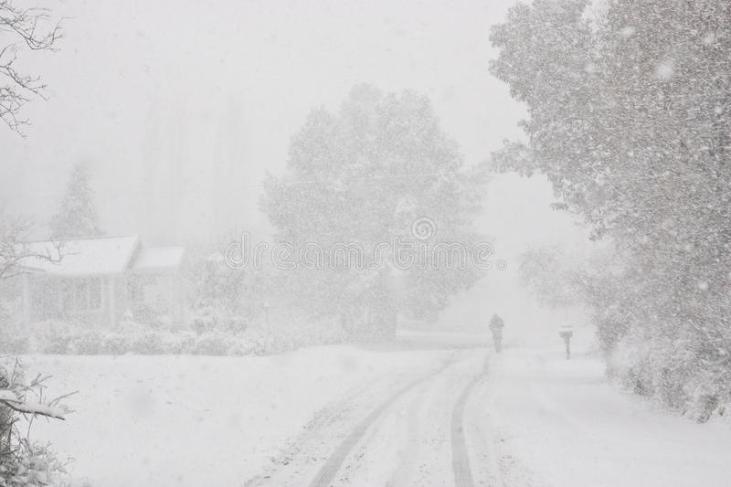 Pacific Northwest Winter Scenic. Pedestrian walking down snowy driveway during a Pacific Northwest winter snow storm stock photos
