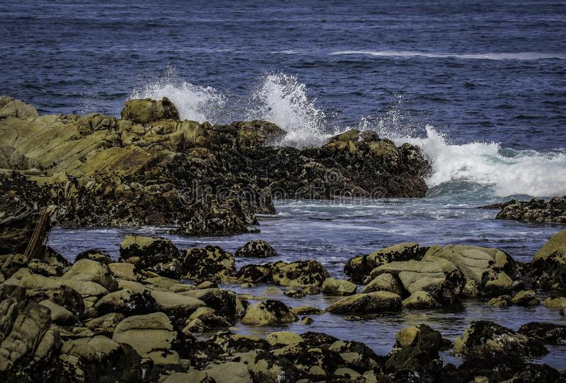 Rocky Seashore With Surf. Pacific Ocean textured rocks and blue water surf splash royalty free stock photo