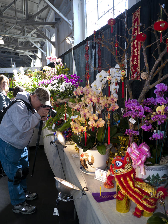 Photographer At The Orchid Exhibition Editorial Stock Photo