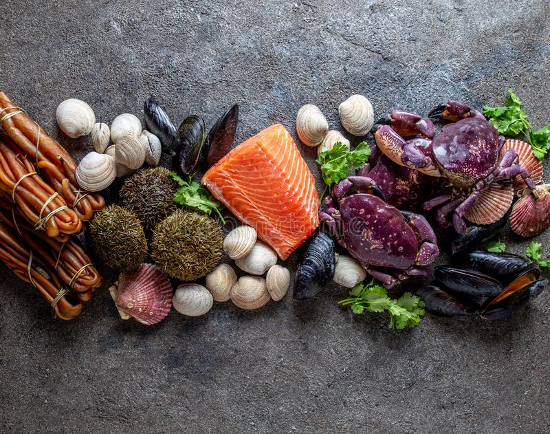 PACIFIC SEAFOOD. Fresh salmon, crabs ostions clams mussels, seaweed cochayuyo, sea urchins. Food background with copy royalty free stock images