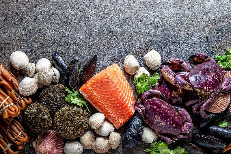 PACIFIC SEAFOOD. Fresh salmon, crabs ostions clams mussels, seaweed cochayuyo, sea urchins. Food background with copy royalty free stock photography