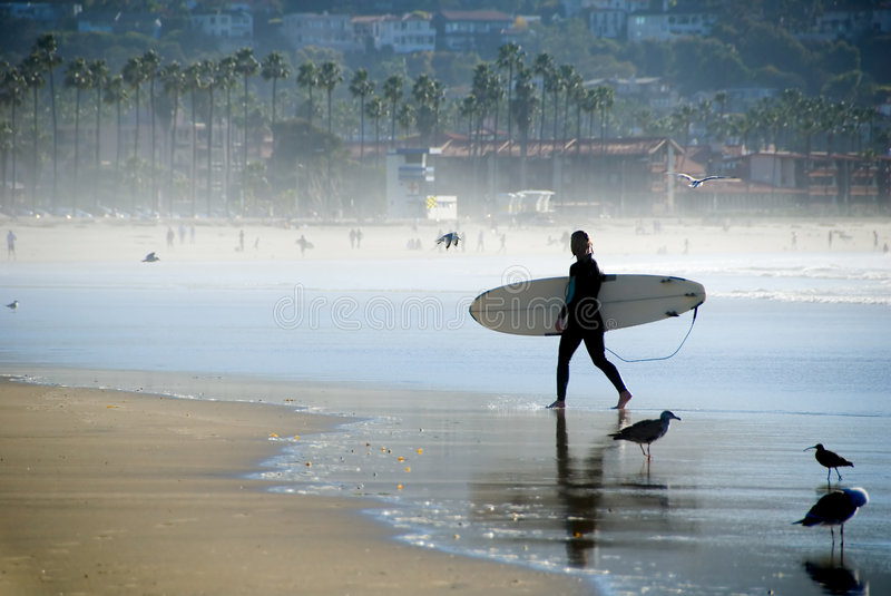 Pacific Surfer royalty free stock photography