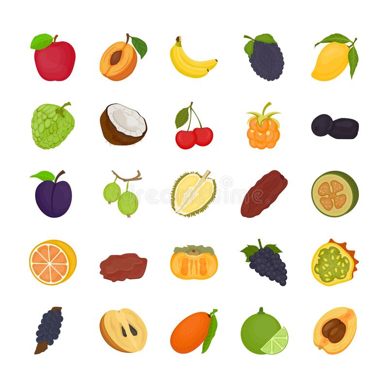 Fruit Flat Icons. A pack full of fruits' icons of all kinds from around the world. Whether the fruit is citrus or it is seed-bearing, it is small or big royalty free illustration