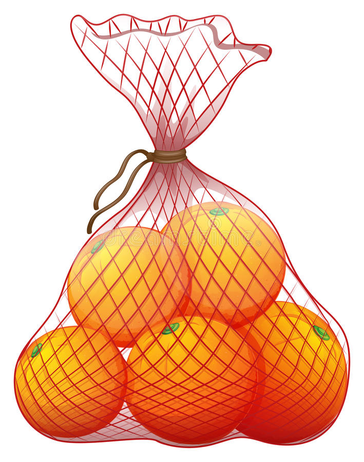 A pack of ripe oranges. Illustration of a pack of ripe oranges on a white background vector illustration