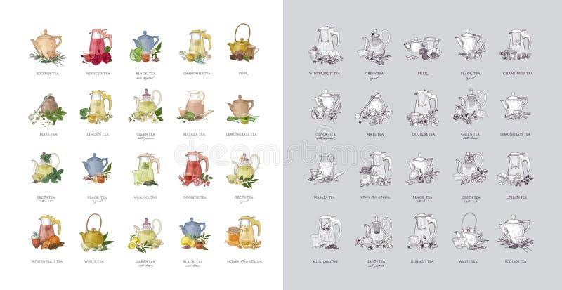 Packe av etiketter eller etiketter med olika typer av te - svart, gräsplan, rooibos, masala, kompis, puer Dragen samling av hande vektor illustrationer