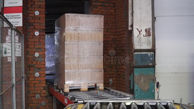 Packed box on production line. Clip. Cardboard boxes on conveyor belt in factory.  royalty free stock image
