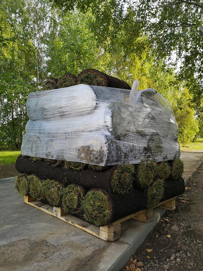 Packed pallet of rolled green lawn outdoors stock photo