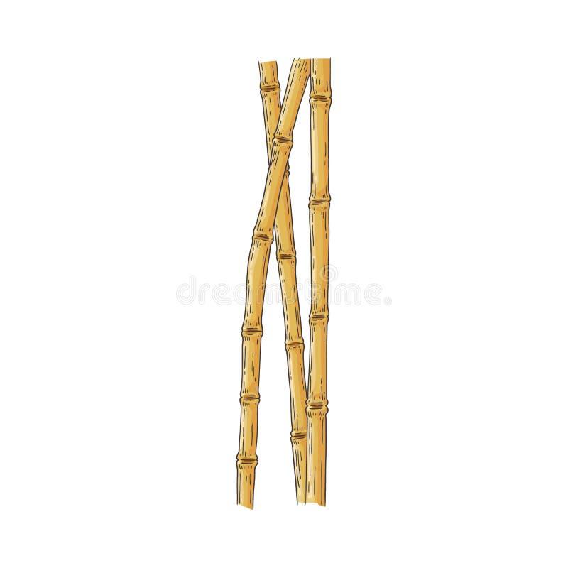 Packen av bruna bambupinnar skissar in stil som isoleras på vit bakgrund royaltyfri illustrationer