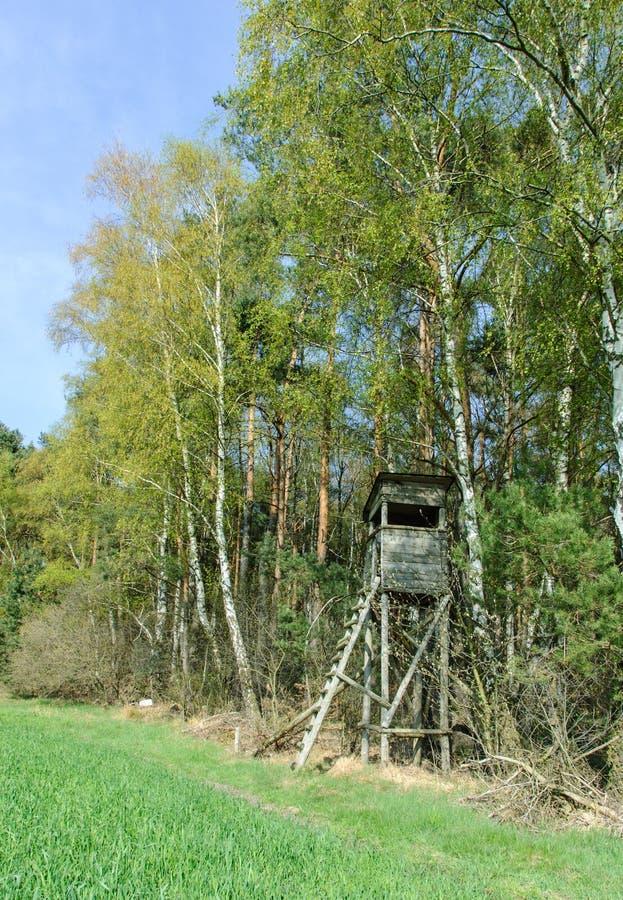 Packen Sie Stand am Rand eines Waldes ein stockfotografie