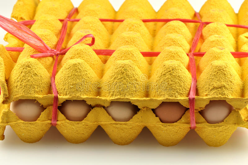 Packing Eggs Stock Photography