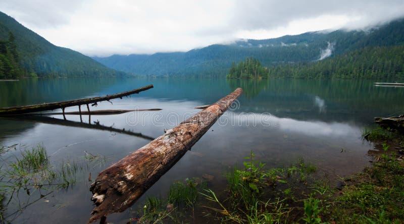 Packwood See, Washington lizenzfreie stockfotografie