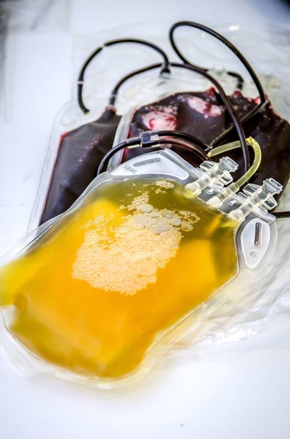 Pacote com plasma e dois sacos do sangue doado fotos de stock
