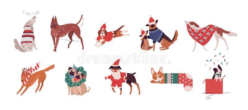 Pacote de cães bonitos das raças diferentes vestidas em trajes do Natal ou no jogo com decorações do feriado Grupo de ilustração royalty free