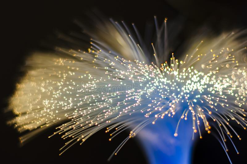 Pacote torcido de fibras óticas que transmitem a luz elétrica imagens de stock