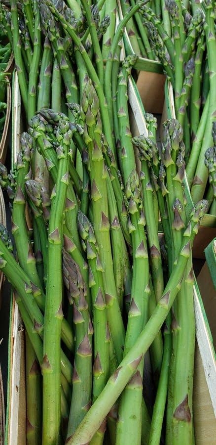 Pacotes verdes da lança do aspargo fotografia de stock