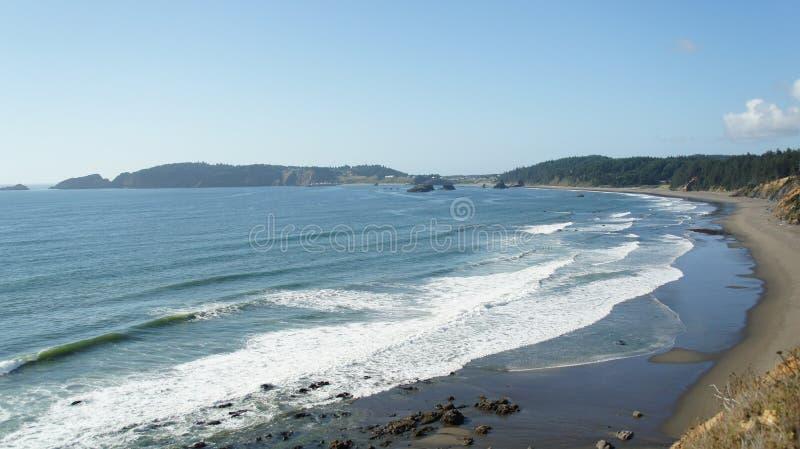 Pacyficzni kipiel podołki przy Oregon linią brzegową obrazy stock