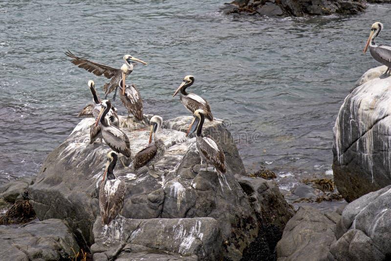 Download Pacyficzny Ocean Santiago De Chile Obraz Stock - Obraz złożonej z widok, pacific: 106903203
