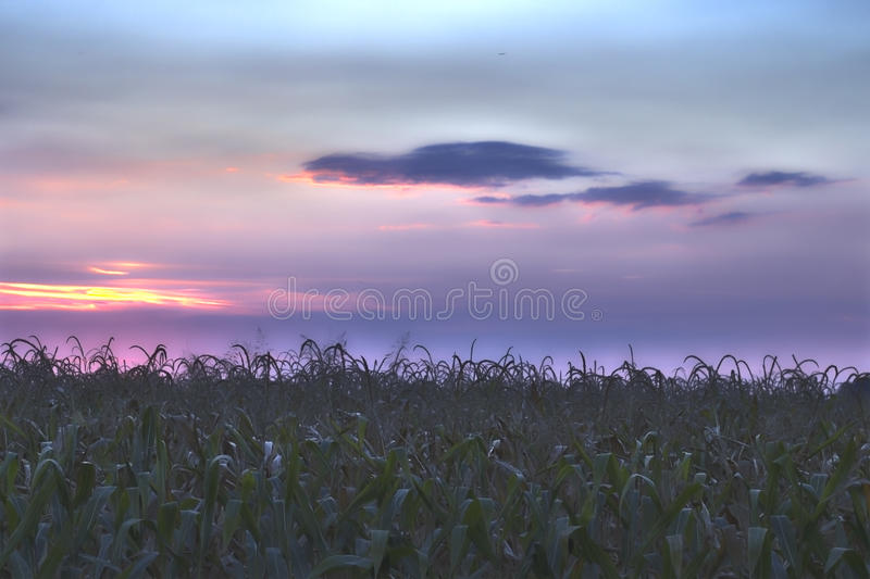 Padana Land stock photos