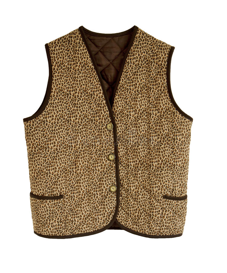 Download Padded Waistcoat With Button Stock Image - Image: 26700747
