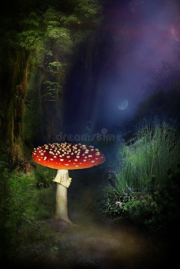 Paddestoel in magisch bos royalty-vrije illustratie