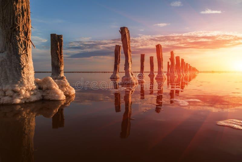 Paddestoel-vormige zoute vorming in het Meer Het water van dit meer is zwaar verzadigd met zout en heeft een heldere roze kleur stock foto