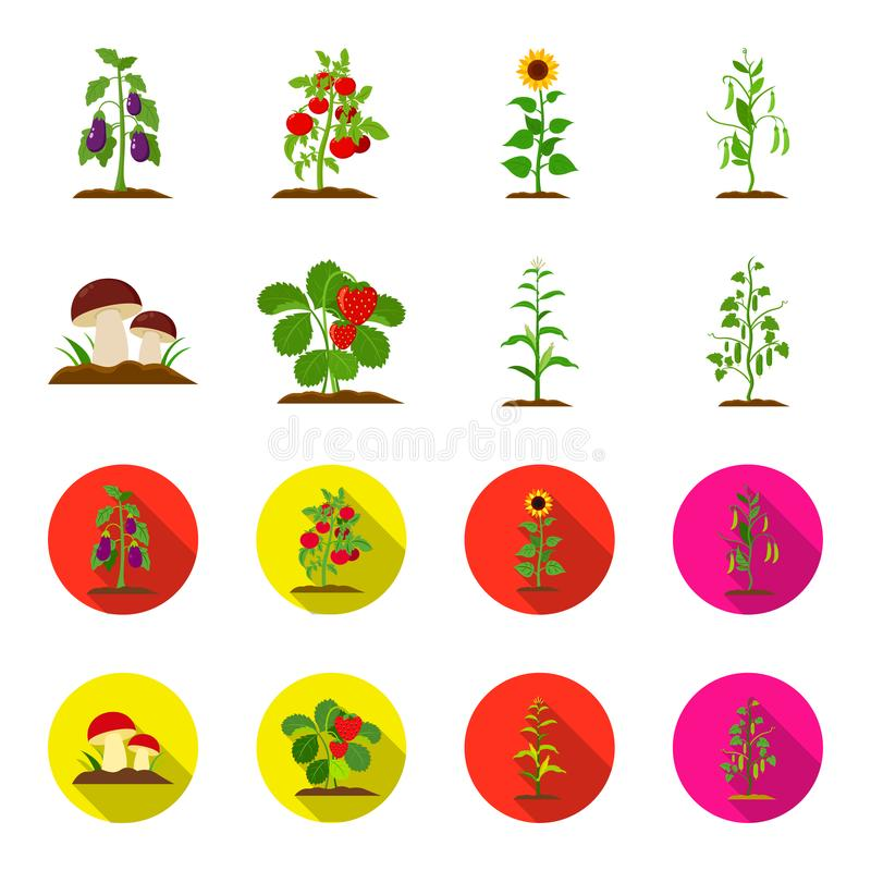 Paddestoelen, aardbeien, graan, komkommer Pictogrammen van de installatie de vastgestelde inzameling in beeldverhaal, de vlakke v vector illustratie
