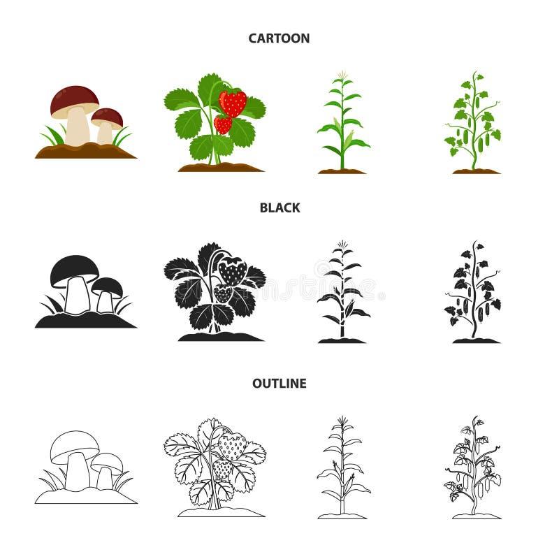 Paddestoelen, aardbeien, graan, komkommer Pictogrammen van de installatie de vastgestelde inzameling in beeldverhaal, zwarte, vec stock illustratie