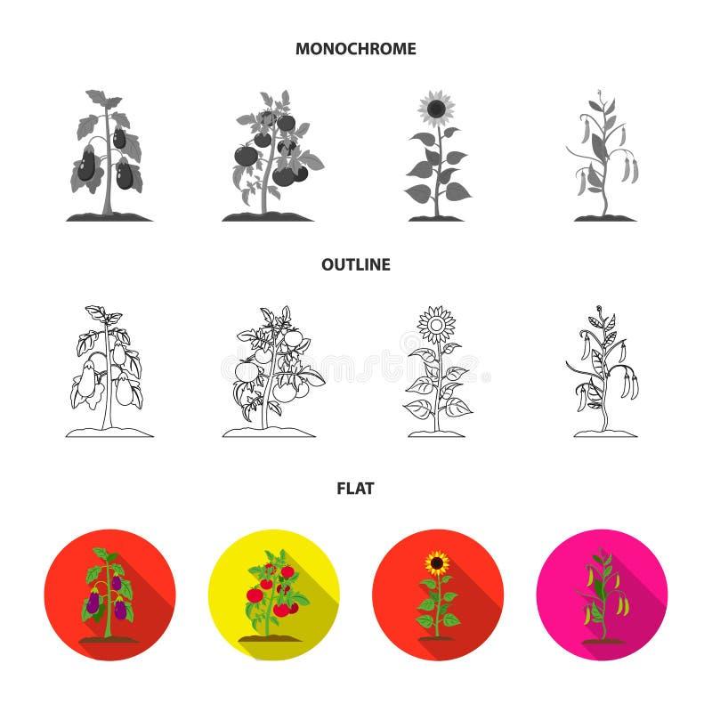 Paddestoelen, aardbeien, graan, komkommer Pictogrammen van de installatie de vastgestelde inzameling in vlakte, overzicht, de zwa royalty-vrije illustratie