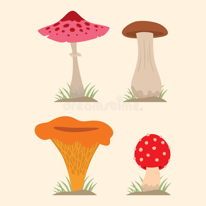 Paddestoelen voor eetbaar kokvoedsel en de giftige vegetarische gezonde herfst van de aardmaaltijd en paddestoel organische plant vector illustratie