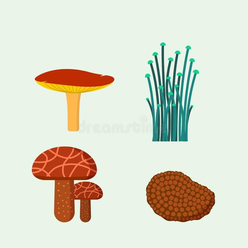 Paddestoelen voor eetbaar kokvoedsel en de giftige vegetarische gezonde herfst van de aardmaaltijd en paddestoel organische plant stock illustratie