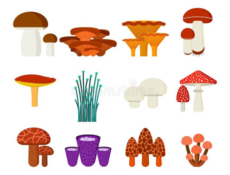 Paddestoelen voor eetbaar kokvoedsel en de giftige vegetarische gezonde herfst van de aardmaaltijd en paddestoel organische plant royalty-vrije illustratie