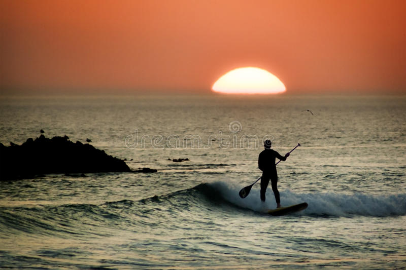 Paddle board surfer at sunset royalty free stock photo