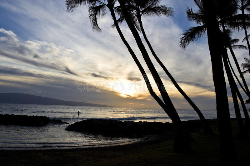 Paddle boarder at sunset, Maui, Hawaii royalty free stock photos