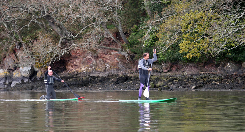 Paddle boarders. On the River dart royalty free stock images