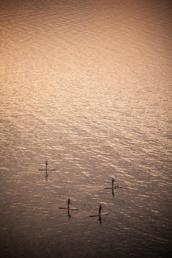 Paddle boarders on lake. High angle shot of a paddle boarders on a lake royalty free stock image