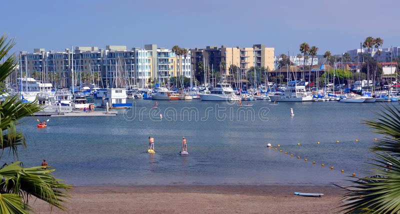 Paddle Boarders at Marina Del Rey, Los Angeles, USA. stock photos