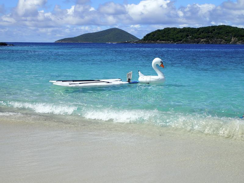 Paddle boards and blow up swan with a rent me sign royalty free stock photography