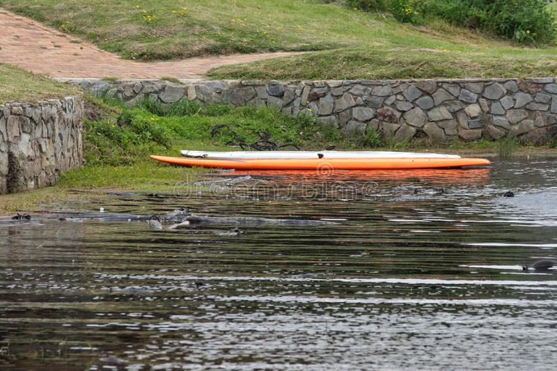 Paddle boards stock image