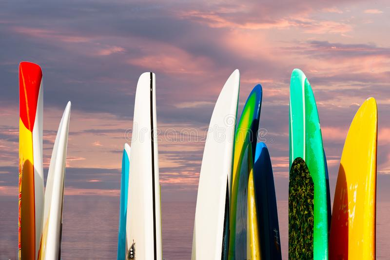 Paddle boards racked against a seascape sunset sky with ocean background royalty free stock photo