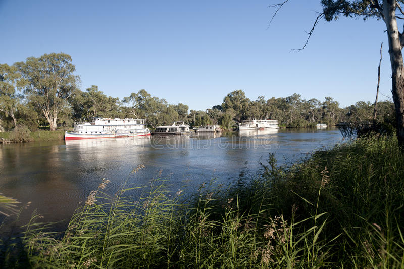 Paddle boats on Murray river. Paddle boats on the Murray river at Mildura, Australia after recent heavy rains and flooding in early 2011 royalty free stock image