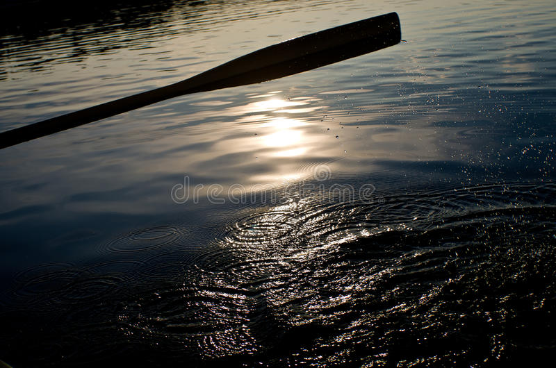 Download Paddle on a lake stock photo. Image of sport, canoeing - 21404862
