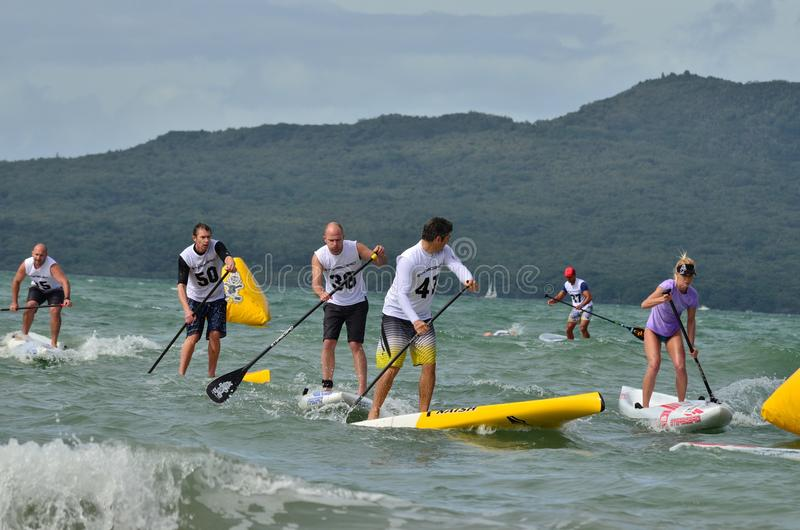 Download Paddleboard Race editorial stock photo. Image of race - 24124818