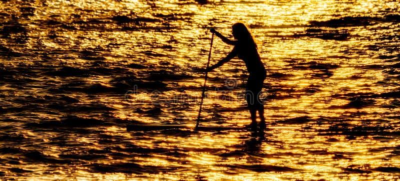 Paddleboarder en silhouette photos libres de droits