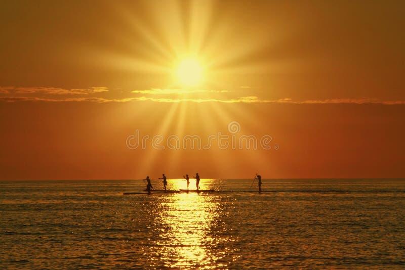 Paddleboarders i banan av solen som solen går ner arkivfoto