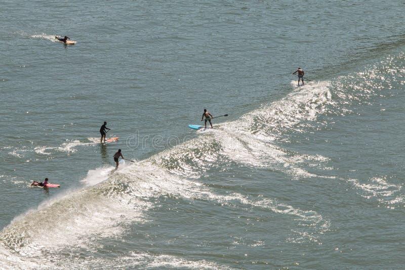 Paddleboarders låsvåg av Sao Vicente Brazil Coastline arkivbild