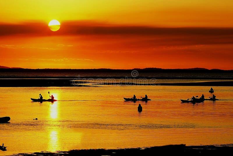 Paddleboards på solnedgången arkivbild