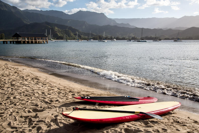 Paddleboards, plage tropicale photographie stock